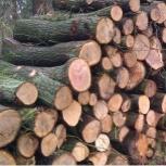 Дрова метровки оптом (дуб, вяз, ясень), Волгоград