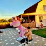 Шуточный стриптиз Шоу ростовых кукол, Волгоград